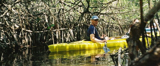 Exploring the mangroves by kayak in the Everglades