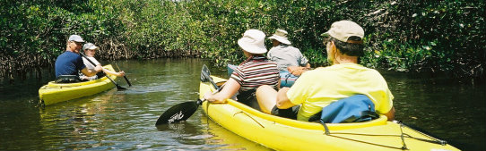 Cruising with new friends by kayak in the Everglades